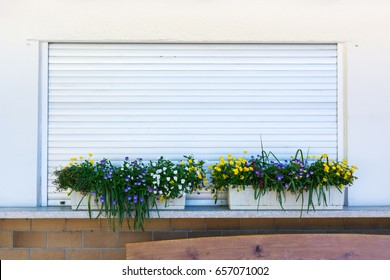 Flower Planter Box Grass over Closed Metal Rolladen German Shop Closing Time Wall Straight