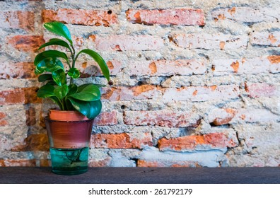 Flower in pot with brick wall