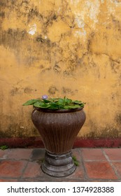 Flower pot in Front of a Typical traditional yellow house in the streets of Hoi An, Vietnam