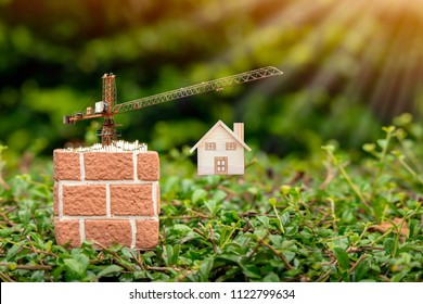Flower pot and gold coins with growing and tower crane with build new house put on the green grass in the public park, saving money or loan for construction real estate and home concept.