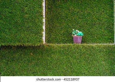 Flower pot on green grass wall pattern