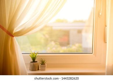 flower in pot on window. fake pot plants with sunshine light.