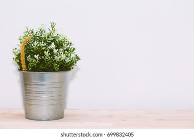 Flower in pot on wooden table
