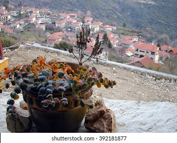 Flower pot overlooking a village A pot of flowers that enjoys the view somewhere in the mountains of Greece