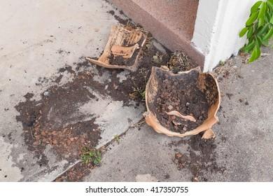 Flower pots broken Old derelict  fracture