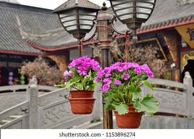 Flower Pots Hanging from Lanterns Outside Chinese Temple - Chengdu, China (Summer)