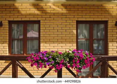 flower pots on the balcony