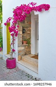 Flower pots on wall of narrow streets of Bodrum with white houses in Greek style Bodrum.Turkey.