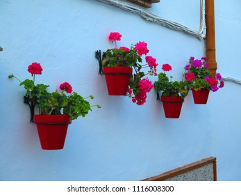 Flower pots on wall in Village, Andalusia - Spain