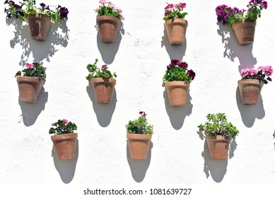 Flower pots and white wall, Olvera village, Cadiz, Andalusia Southern Spain, Europe