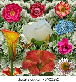 Flower Power: A blast of colorful blossoms: roses, calla lily, magnolia, hibiscus, cone flower, hydrangea, and trumpet vine. composite.
