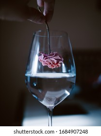 Flower put in wineglass with water by man hand. Clear and natural abstract high quality photo for decoration
