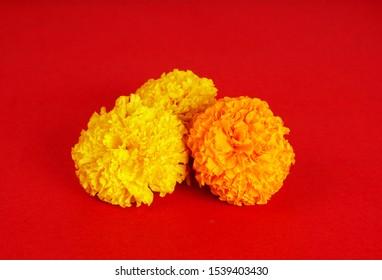 Diwali Flowers Images Stock Photos Vectors Shutterstock