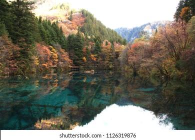 "Jiuzhaigou's ""Five Flower Lake"" reflecting the mountains on a calm afternoon in Jiuzhaigou Valley National Park of Sichuan, China."