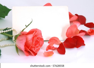 Flower of a rose, petals and card with a place for the text.