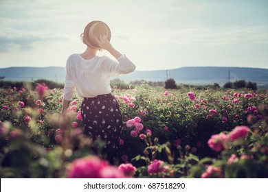 Flower series. Pink field. Crimea, the village of Turgenyevka. A country girl enjoys the sunset, wine and reading books in the fragrant rose garden. The concept of perfume
