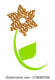 Flower shape with walnuts, green stem and leaf, on a white background. Useful for food blog posts, banner, labels.