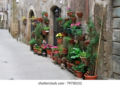 flower shop in an alley in Pitigliano in Tuscany