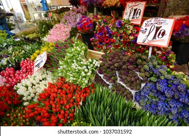 Flower shop with the flower name and price signages  or labels in Sunday market at London, UK.