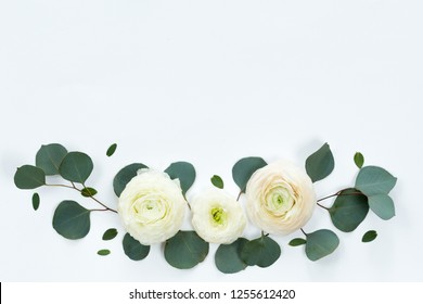 Flower spring frame with fresh branches of ranunculus and pion roses and eucalyptus leaves isolated on white background, flat lay and top view