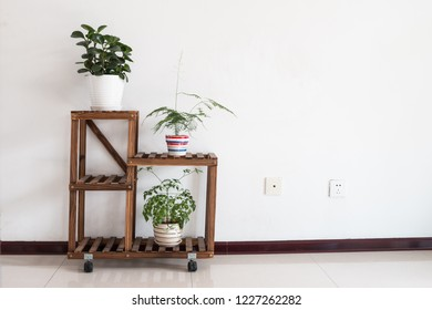 Flower stand indoors