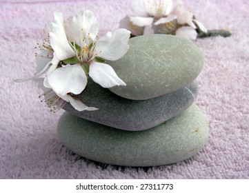 flower and stones on a pink background