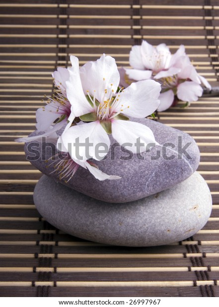 flower and stones on a wood background