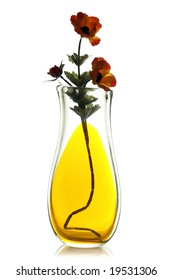 Flower in a transparent glass vase, isolated