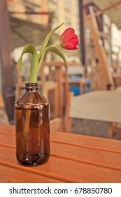 Flower vase in coffee shop in the center of the city
