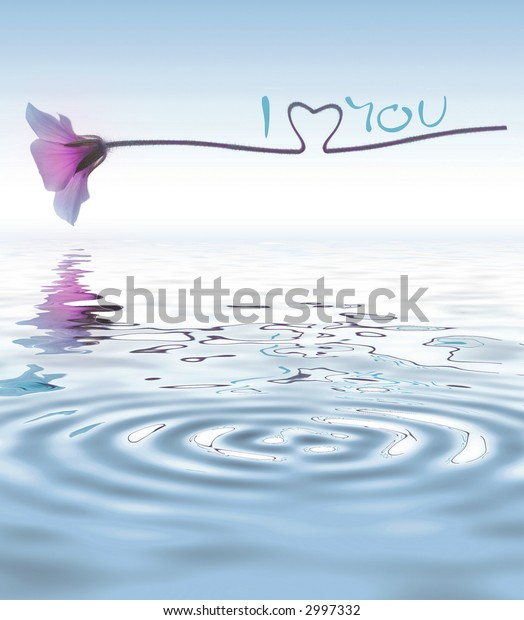 flower - water reflection - I love you - concept
