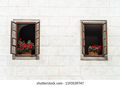 Flower in the window on white wall