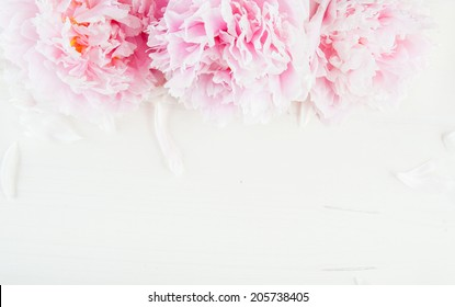 Flower wooden background with peonies and petals