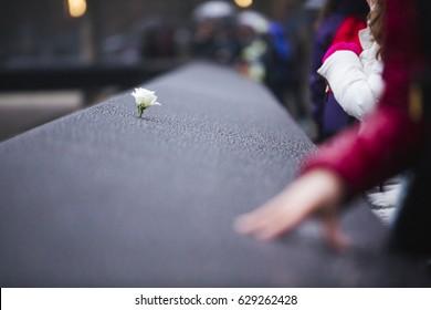 Flower at World Trade Center Memorial
