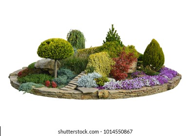 Flowerbed with decorative trees, bushes and flowers in the summer garden, park design. Isolated, white background.