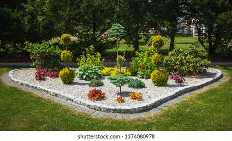 Flowerbed with decorative trees, bushes and flowers in the summer garden