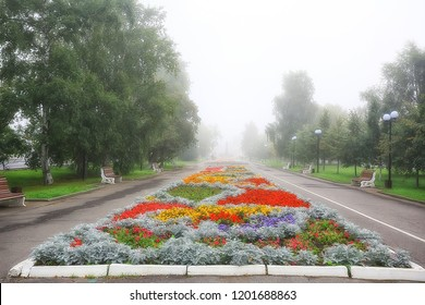 flowerbed flowers city park  beautiful vibrant city flowers in the landscape, urban design