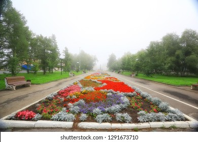 flowerbed flowers city park / beautiful vibrant city flowers in the landscape, urban design
