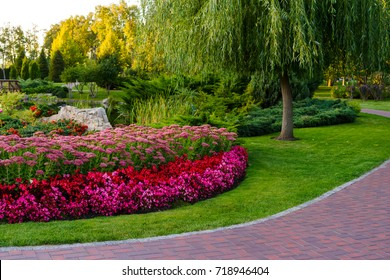 flowerbed with flowers in a park with landscape design