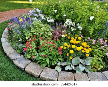 flowerbed in the park