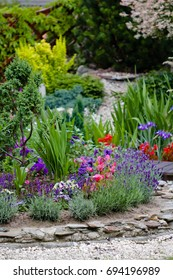 flowerbed with pink and purple flowers next with wooden path