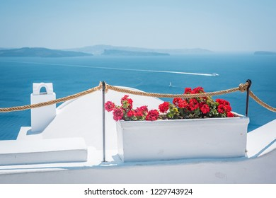 Flowerbed with red flowers and view over of the beautiful Mediterranean Sea. Viewing platform at Santorini, Greece.