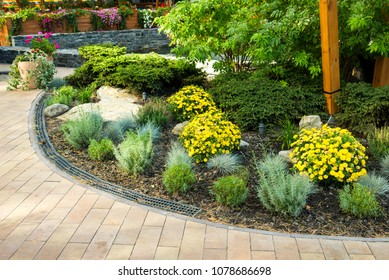 flowerbed in the yard in landscape design