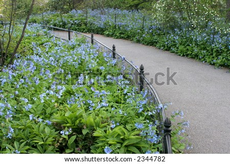 flowerbeds along walkway central park stock photo edit now 2344782