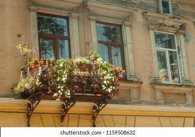 balcony flowers images stock photos vectors shutterstock