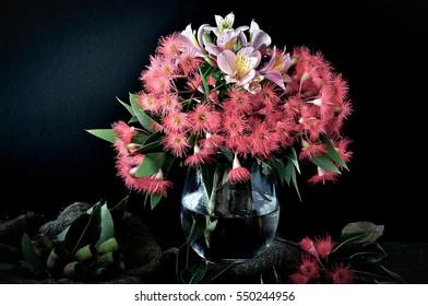 Flowering Australian gums still-life arrangement