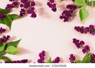 flowering branches of lilac on a pastel background with copy space. A bunch of serenity on a beige background with a place for an inscription. Spring concept