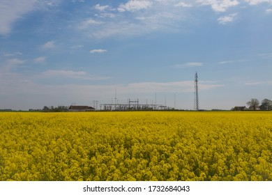A flowering canola field in front of a electric power center. When nature meet the technology