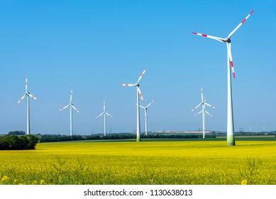 Flowering field of rapeseed with wind energy plants seen in Germany