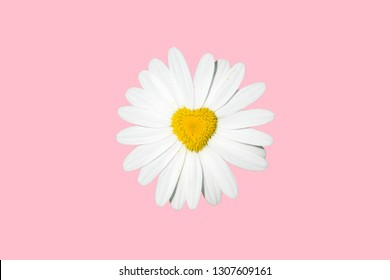 flowering in heart shape