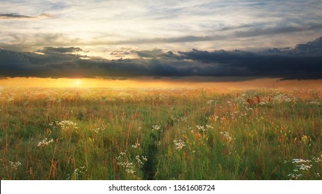Flowering meadow with dramatic sunset sky in summer or spring with beatiful clouds and warm sunlight. Dreamy scenery